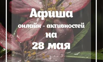 Разнообразные интерактивы на 28 мая