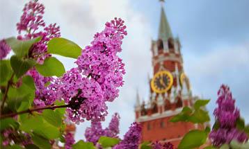 Московская весна 2020: итоги