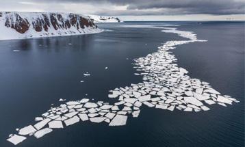 «Живые моря Российской Арктики»